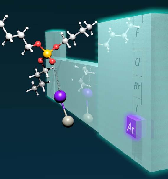 AtI liaison halogène