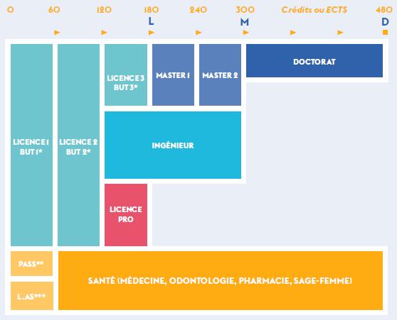 Schéma des études LMD
